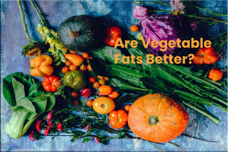 Are Vegetable Fats Better?