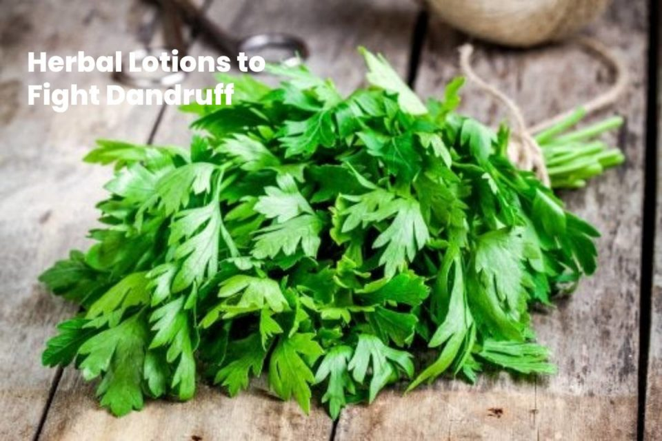 Herbal Lotions