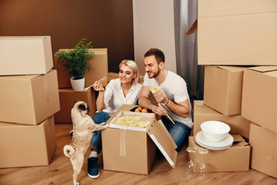 Move House Without Stressing Your Dogs Out